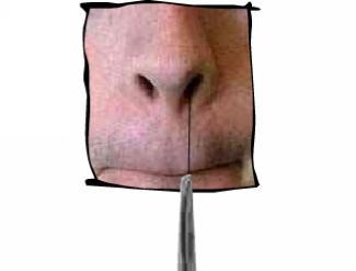 Les poils de nez